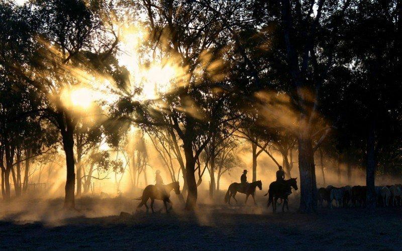 Horse-back-riding-RMNP_Estes-Park-Vacation-Lodge