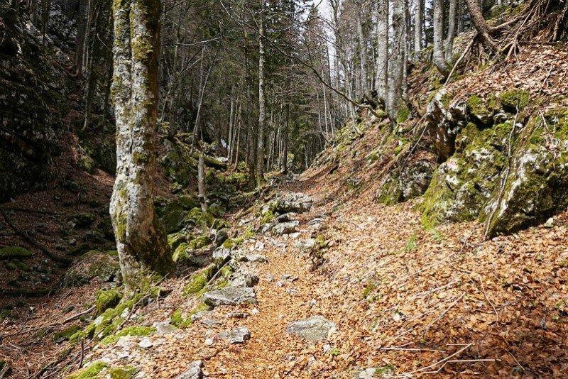 Black Lake Trail_Estes Park Vacation